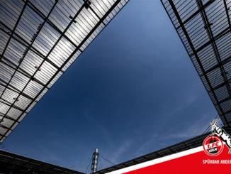 FC Dach neu